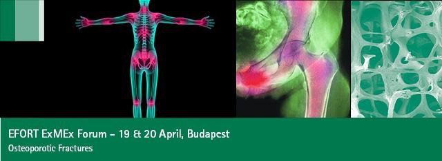 Banner_Budapest2013